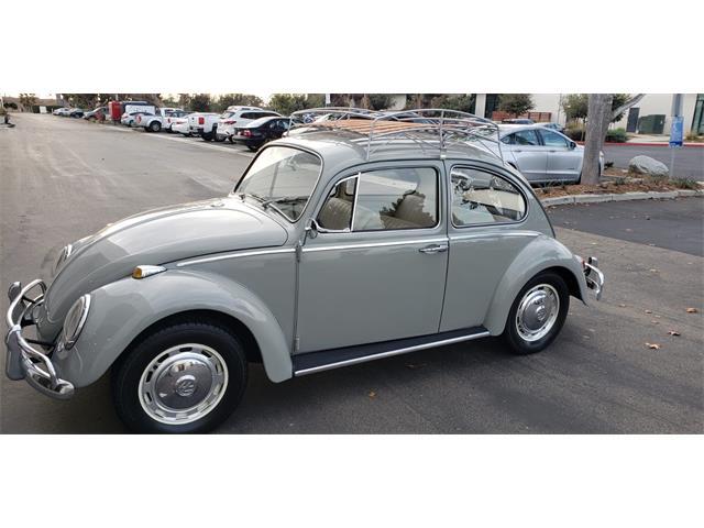 1966 Volkswagen Beetle (CC-1302833) for sale in Solana Beach, California