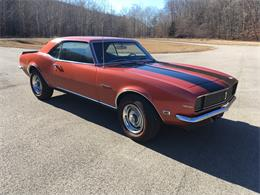 1968 Chevrolet Camaro (CC-1302847) for sale in Salt Lick, Kentucky