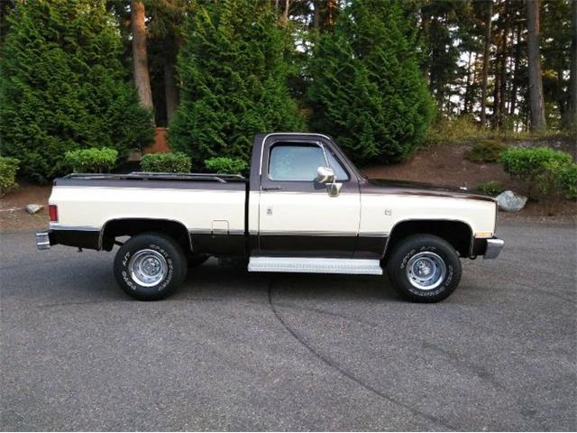 1987 GMC 1500 (CC-1302984) for sale in Cadillac, Michigan