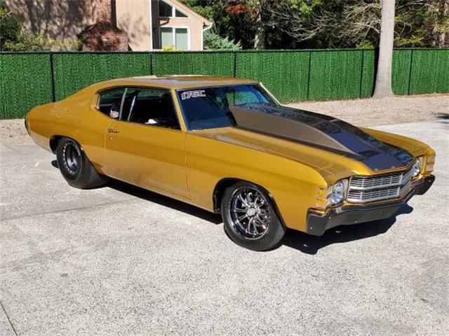 1971 Chevrolet Chevelle (CC-1303549) for sale in Cadillac, Michigan