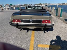 1973 Ford Mustang (CC-1303552) for sale in Cadillac, Michigan