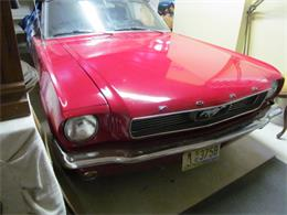 1966 Ford Mustang (CC-1303954) for sale in Buena, New Jersey