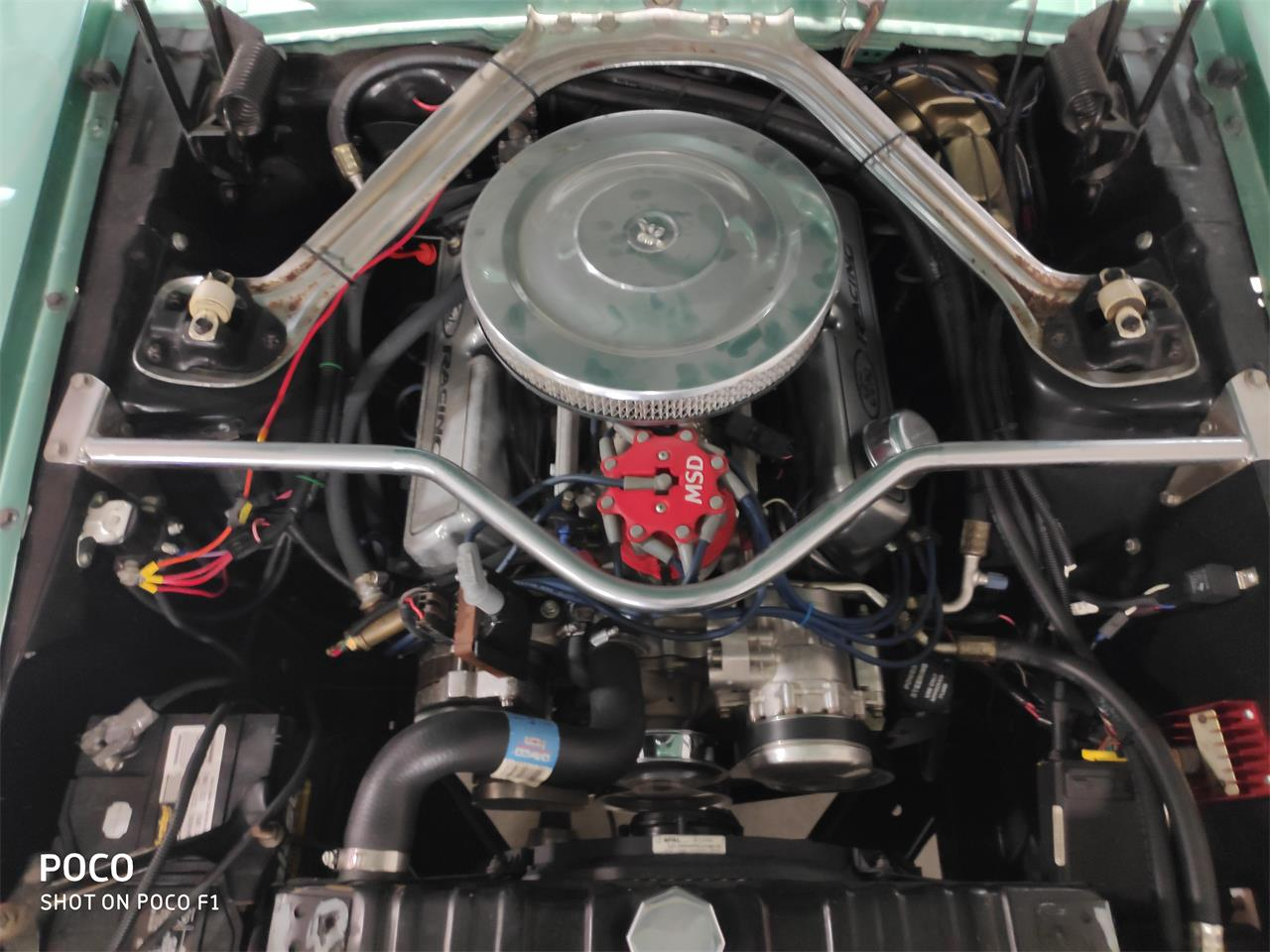 1969 Ford Mustang (CC-1304502) for sale in New Braunfels, Texas