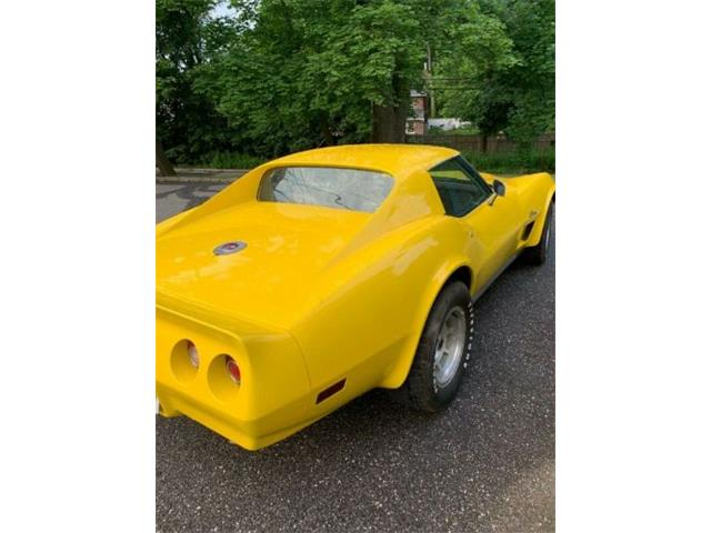 1976 Chevrolet Corvette (CC-1304660) for sale in Cadillac, Michigan
