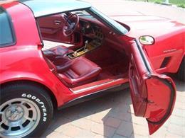 1982 Chevrolet Corvette (CC-1304670) for sale in Cadillac, Michigan