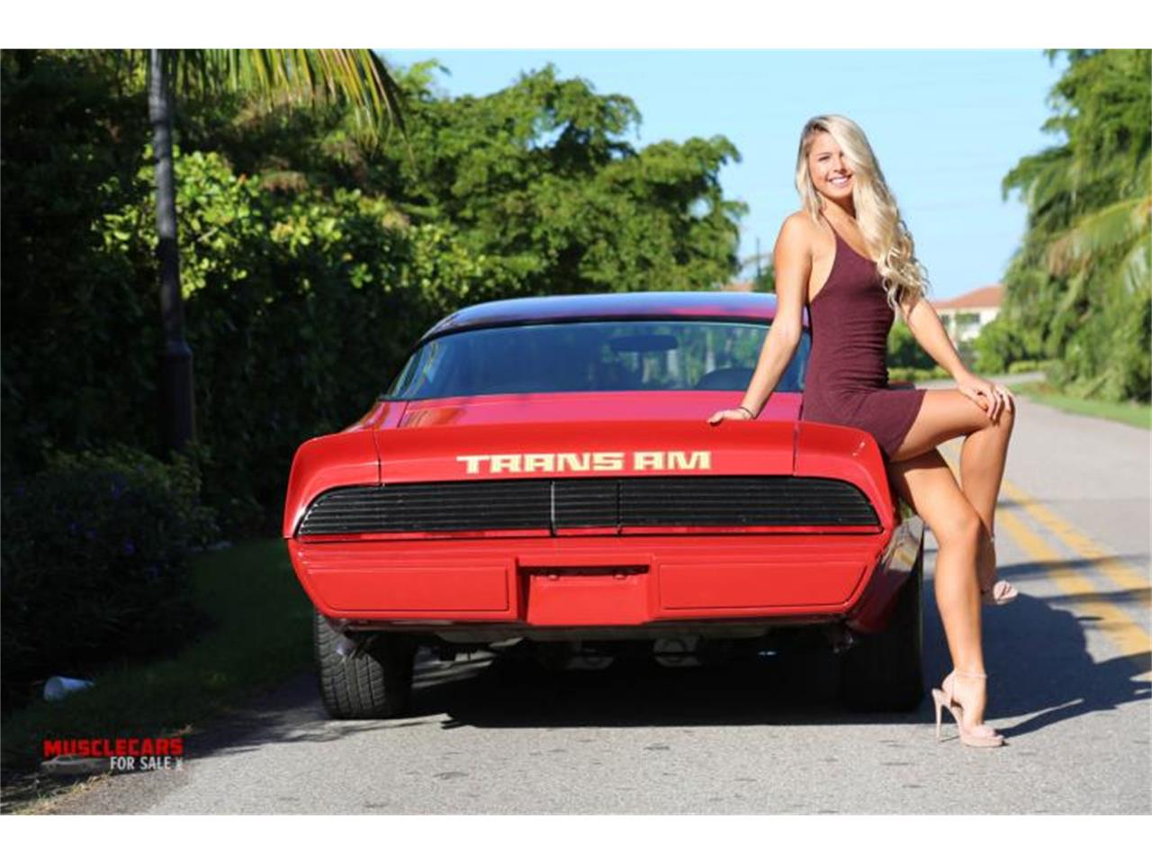 1980 Pontiac Firebird Trans Am (CC-1306192) for sale in Fort Myers, Florida