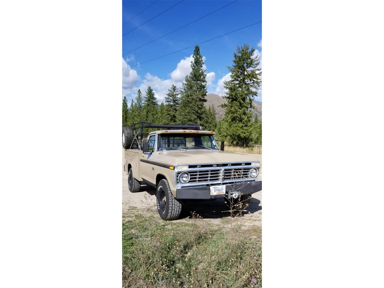 1975 Ford F100 (CC-1306201) for sale in Missoula, Montana
