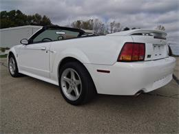 1999 Ford Mustang SVT Cobra (CC-1307321) for sale in Jefferson, Wisconsin