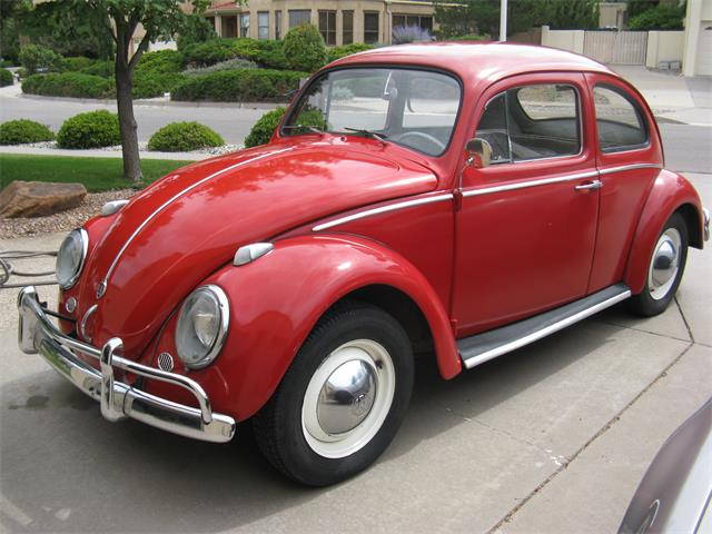 1961 Volkswagen Beetle (CC-1300848) for sale in Albuquerque, New Mexico