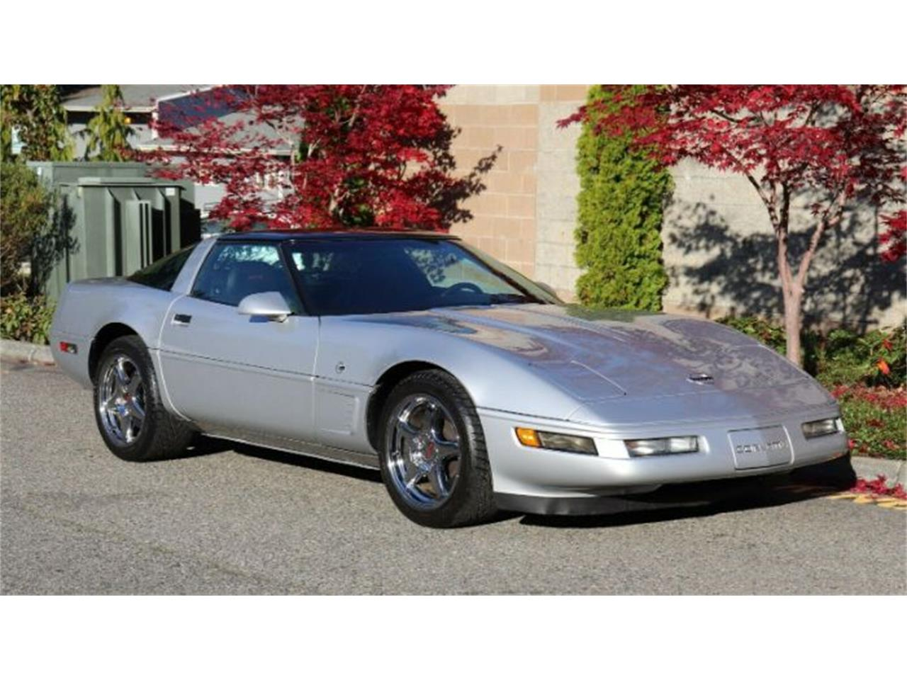 1996 Chevrolet Corvette (CC-1308609) for sale in Cadillac, Michigan