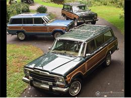 1989 Jeep Grand Wagoneer (CC-1309188) for sale in Bemus Point, New York