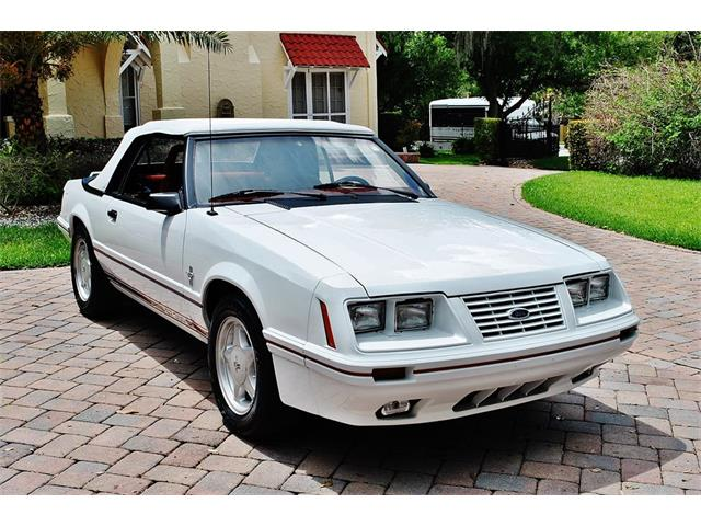 1984 Shelby GT350 (CC-1311505) for sale in Lakeland, Florida