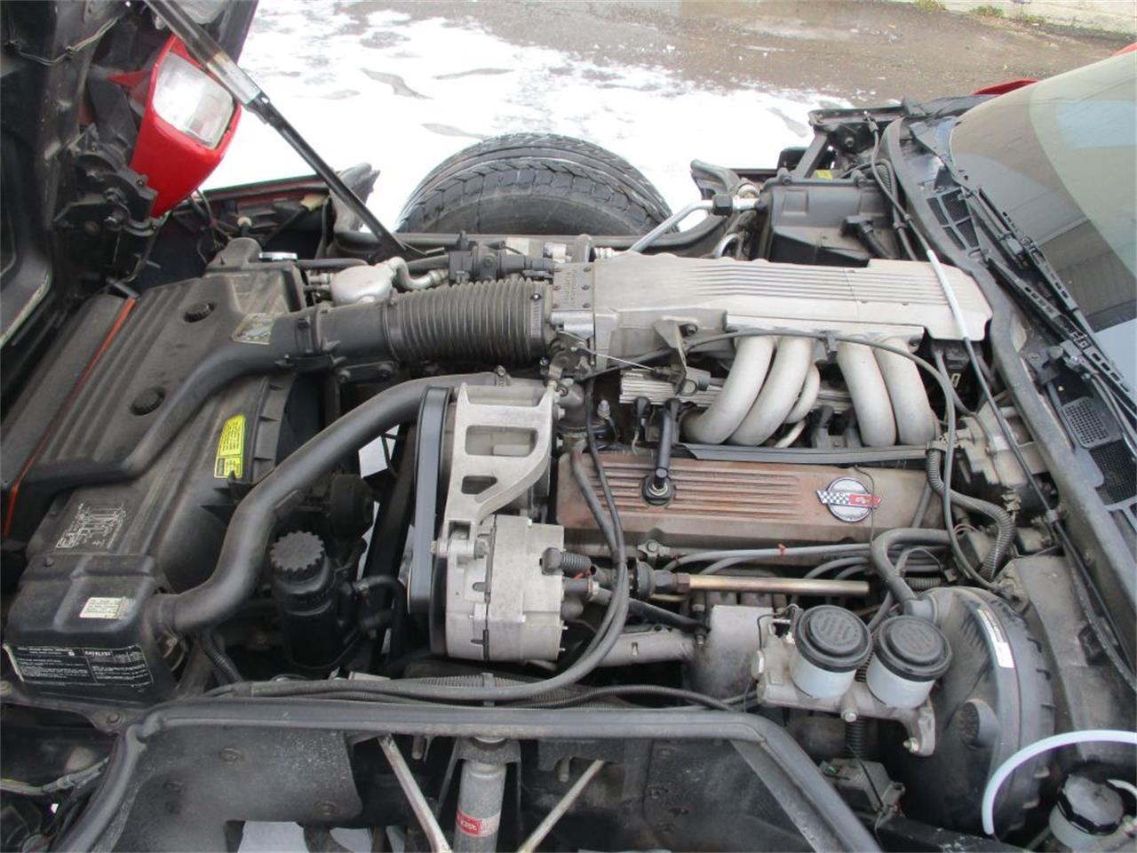 1985 Chevrolet Corvette (CC-1311938) for sale in Ham Lake, Minnesota