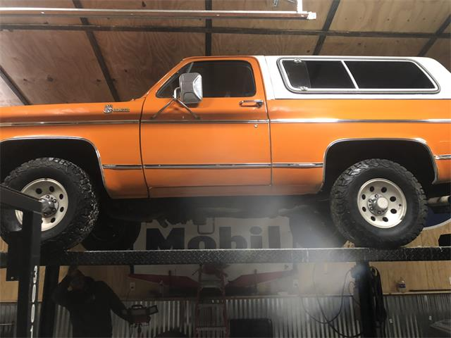 1979 Chevrolet Blazer (CC-1311993) for sale in Middle grove, New York