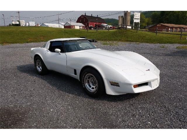 1981 Chevrolet Corvette (CC-1312229) for sale in Cadillac, Michigan