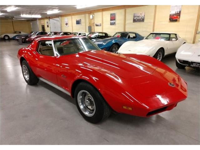 1974 Chevrolet Corvette (CC-1312246) for sale in Cadillac, Michigan