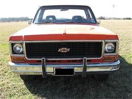 1974 Chevrolet Pickup (CC-1312832) for sale in Cadillac, Michigan