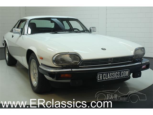 1988 Jaguar XJS (CC-1315572) for sale in Waalwijk, Noord-Brabant