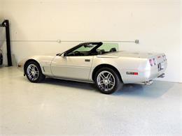 1996 Chevrolet Corvette (CC-1315805) for sale in Boca Raton, Florida