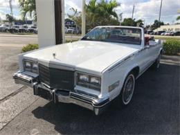 1984 Cadillac Eldorado (CC-1316041) for sale in Miami, Florida