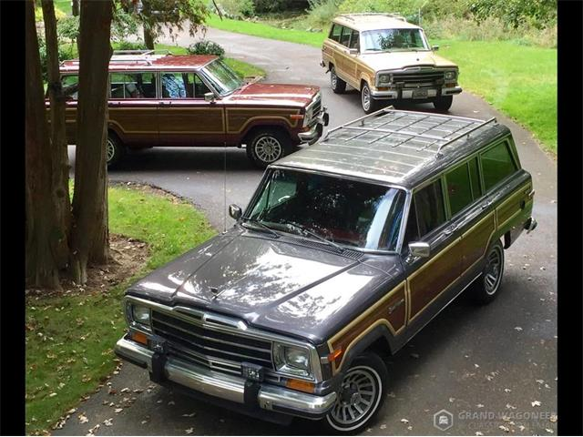 1990 Jeep Grand Wagoneer (CC-1316406) for sale in Bemus Point, New York