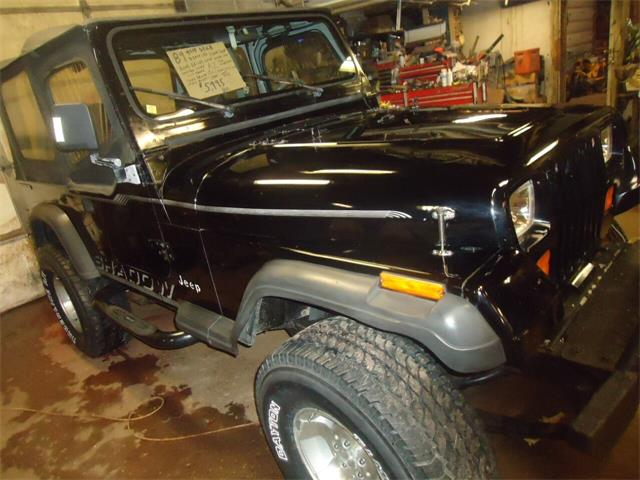 1989 Jeep Wrangler (CC-1316909) for sale in Jackson, Michigan