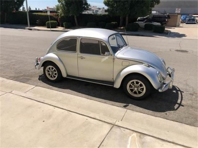 1969 Volkswagen Beetle (CC-1310696) for sale in Cadillac, Michigan