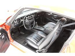 1979 Pontiac Firebird Trans Am (CC-1317517) for sale in Morgantown, Pennsylvania