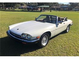 1990 Jaguar XJS (CC-1317835) for sale in Lakeland, Florida