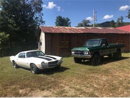 1973 Chevrolet Camaro (CC-1318761) for sale in Cadillac, Michigan