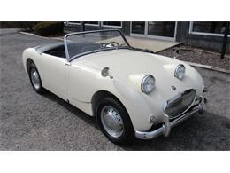 1960 Austin-Healey Sprite (CC-1319182) for sale in WASHINGTON, Missouri