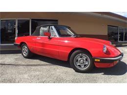 1984 Alfa Romeo Spider (CC-1322223) for sale in Lakeland, Florida