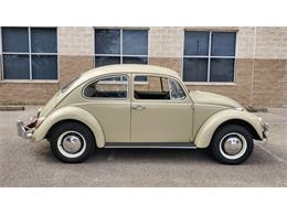 1967 Volkswagen Beetle (CC-1322474) for sale in Austin, Texas