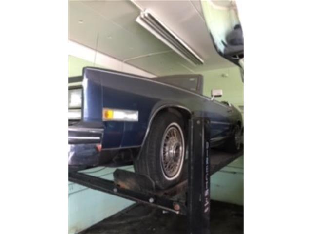 1983 Cadillac Eldorado (CC-1322578) for sale in Miami, Florida