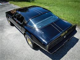 1979 Pontiac Firebird Trans Am (CC-1323131) for sale in Palmetto, Florida