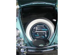 1962 Volkswagen Cabriolet (CC-1327660) for sale in Edwardsburg, Michigan