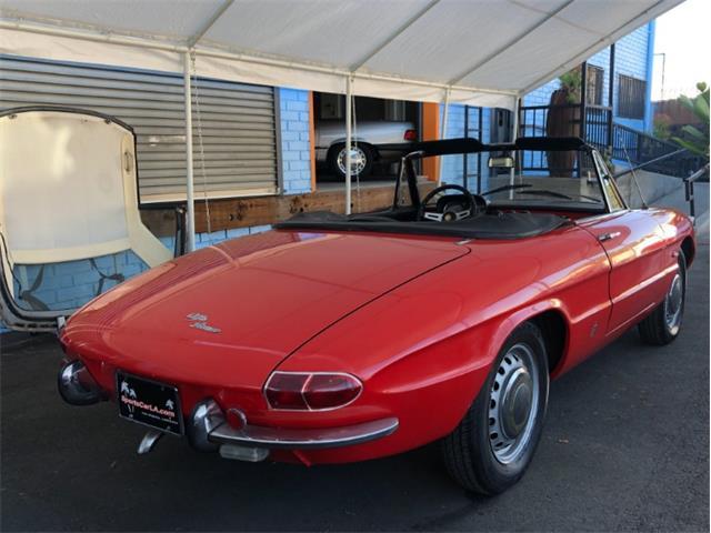 1967 Alfa Romeo Spider (CC-1327891) for sale in Los Angeles, California