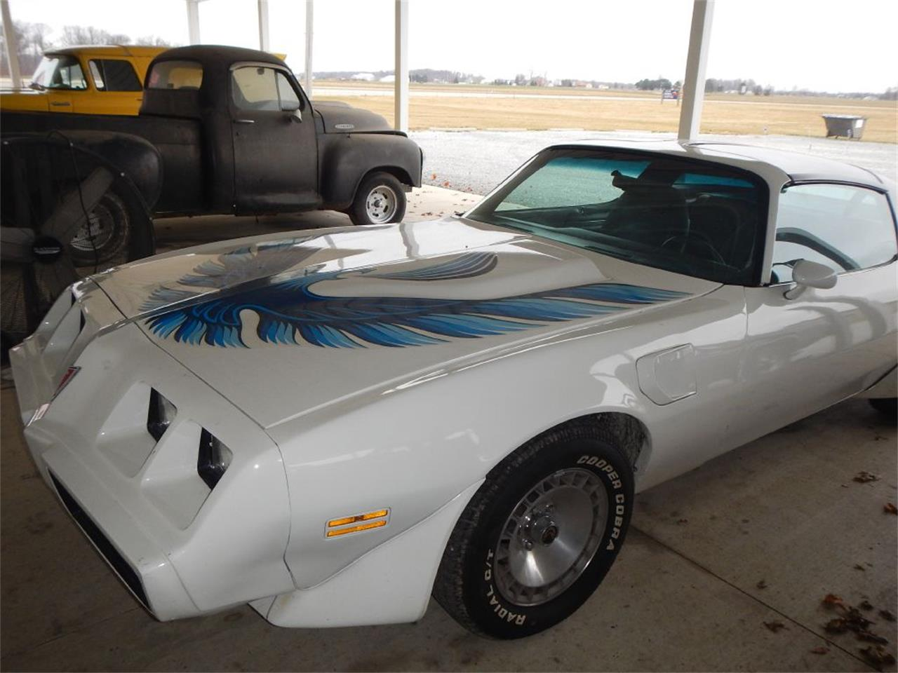 1981 Pontiac Firebird (CC-1327897) for sale in Celina, Ohio
