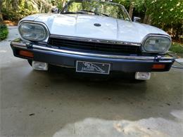 1992 Jaguar XJS (CC-1328164) for sale in Hilton Head Island, South Carolina