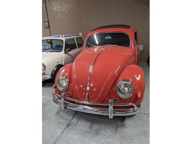 1967 Volkswagen Type 1 (CC-1329153) for sale in Salt Lake City, Utah