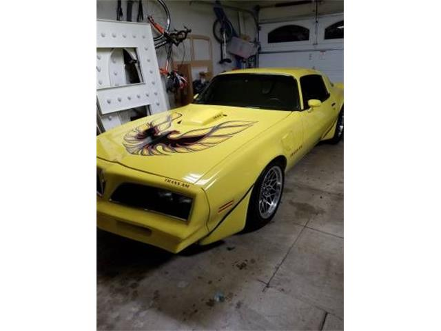 1978 Pontiac Firebird Trans Am (CC-1329725) for sale in Cadillac, Michigan
