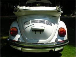 1979 Volkswagen Super Beetle (CC-1331027) for sale in Cadillac, Michigan