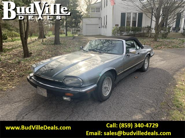 1992 Jaguar XJS (CC-1331997) for sale in Paris, Kentucky