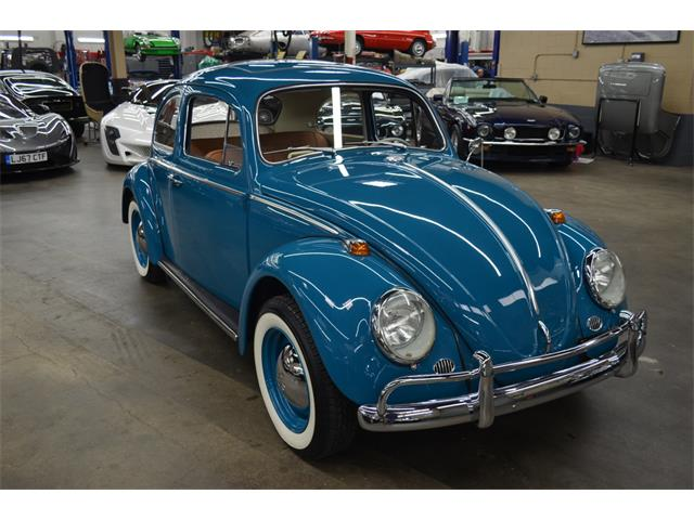 1964 Volkswagen Beetle (CC-1332527) for sale in Huntington Station, New York