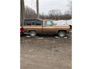 1979 Chevrolet C10 (CC-1332776) for sale in Cadillac, Michigan