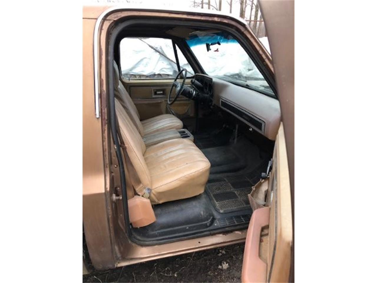 1979 Chevrolet C10 (CC-1332776) for sale in Cadillac, Michigan