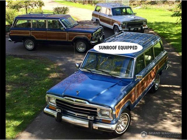 1988 Jeep Grand Wagoneer (CC-1333970) for sale in Bemus Point, New York