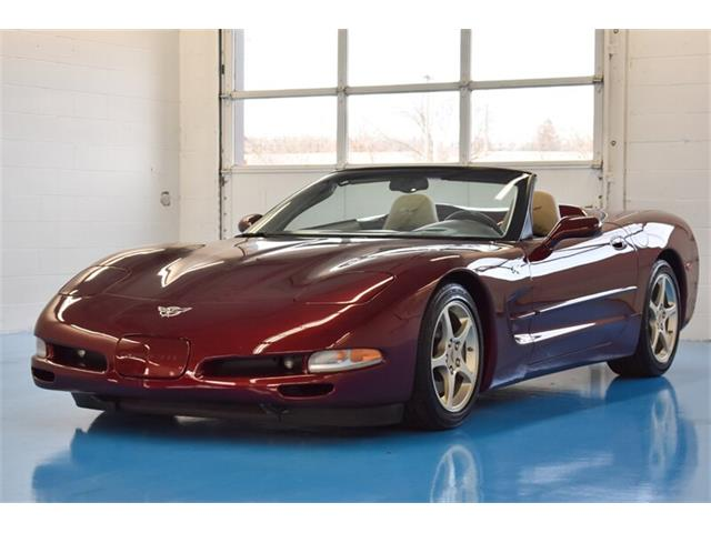 2003 Chevrolet Corvette (CC-1334182) for sale in Springfield, Ohio