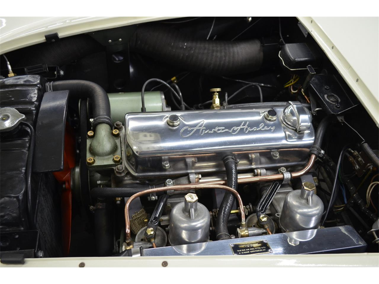 1954 Austin-Healey 100 (CC-1334325) for sale in Huntington Station, New York