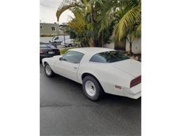 1976 Pontiac Firebird (CC-1335496) for sale in Cadillac, Michigan